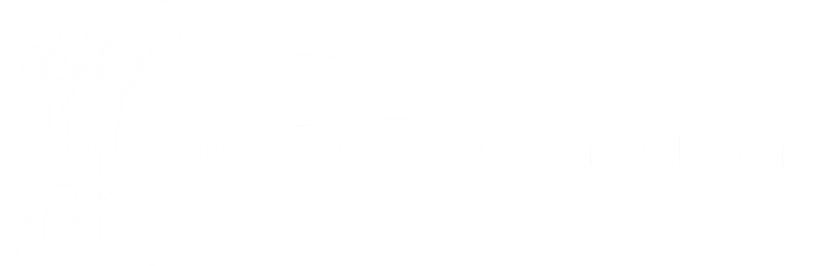 Eco-Tours Tampa Bay